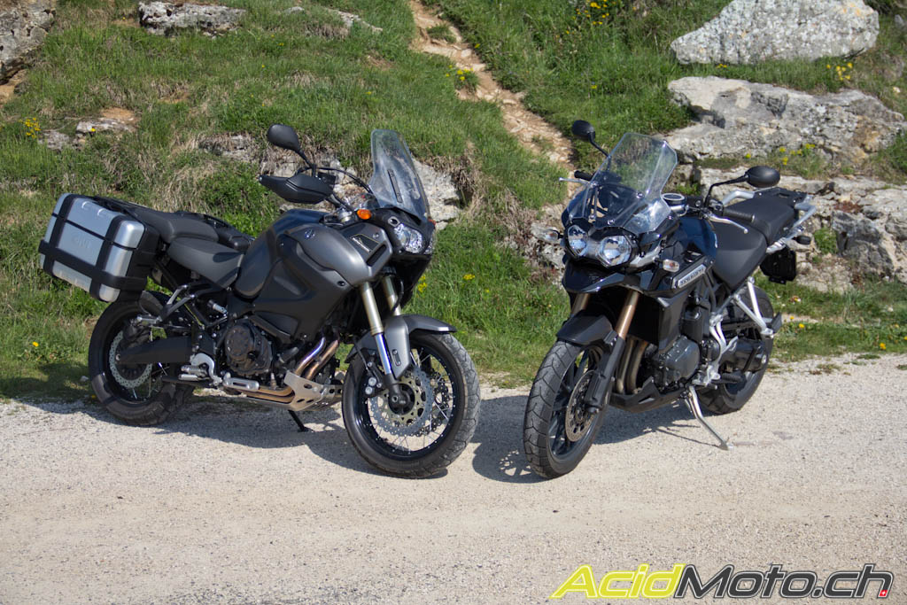 Yamaha Super Tenere Vs Triumph Tiger Explorer