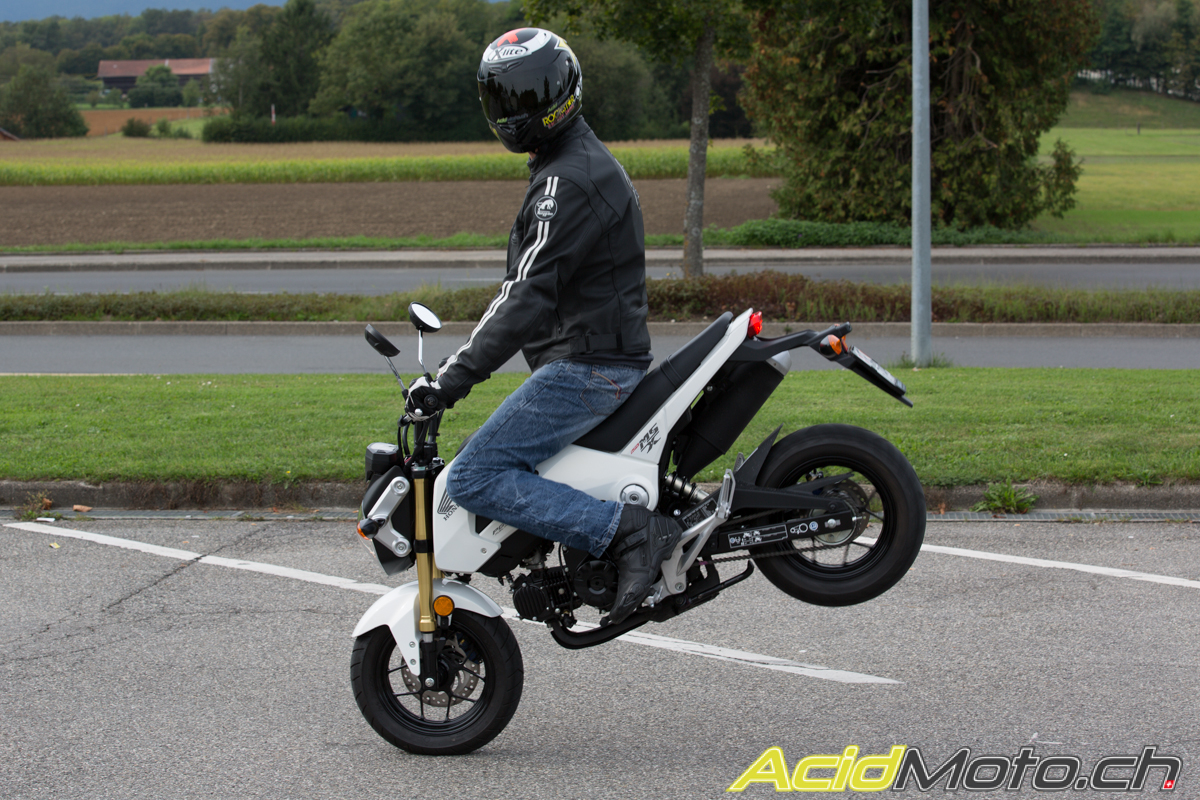 honda msx 125 grom retour vers le futur page 2 sur. Black Bedroom Furniture Sets. Home Design Ideas