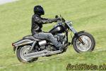 Harley-Davidson Forty-Eight, Switchback et Fat Bob