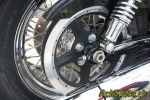 Harley-Davidson Sportster 1200 Custom - Authentique!