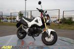 """Honda MSX 125 """"Grom"""" - Retour vers le futur !"""