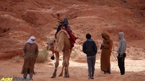 Raid Suricates - A la découverte de l'Algérie! Raid_suricates-04940