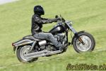 Harley-Davidson Forty-Eight, Switchback et Fat Bob