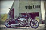 Vida Loca Chopper$ à Bex (VD) - Docteur ès Customising